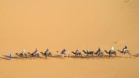 Camel caravan in desert. Camels caravan in the sand desert dunes of Sahara. Safari on camels back royalty free stock photo