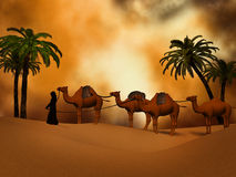 Camel caravan   in the desert Royalty Free Stock Photo