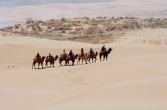 Camel Caravan in the Desert Royalty Free Stock Image