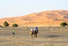 Camel caravan going through the sand dunes. In the Sahara Desert Royalty Free Stock Photos