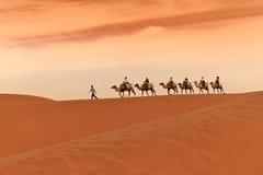 Free Camel Caravan In Desert Stock Photos - 14653503
