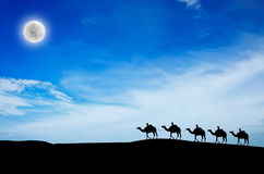 Camel caravan Royalty Free Stock Photography