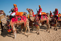 Camel caravan with musicians of the military deportament Stock Images