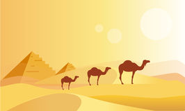 Camel Caravan And Pyramides Stock Photos