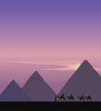 Camel Caravan and the Pyramids Stock Photo