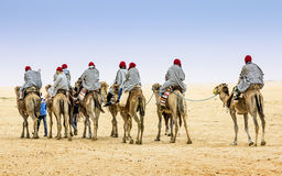 Camel Caravan in the Sahara desert,Africa Royalty Free Stock Photography