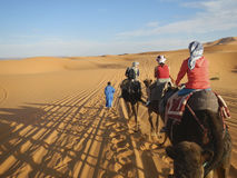Camel caravan in Sahara desert Stock Photos