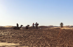 Camel caravan at sahara desert, Morocco Stock Photos