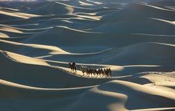 Camel caravan & sand dunes Stock Image