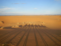 Camel caravan shadows in Sahara desert Stock Images