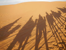 Camel caravan shadows in Sahara desert Royalty Free Stock Image