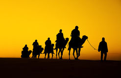 Camel Caravan silhouette. Through the sand dunes in the Sahara Desert, Morocco Royalty Free Stock Photos