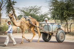 Camel cart. On the remote desert road in Rajasthan, India Stock Photos