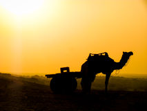Camel and cart silhouette Stock Images