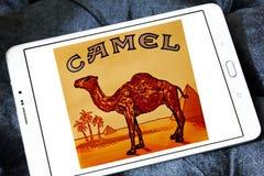 Camel cigarettes company logo Stock Photo