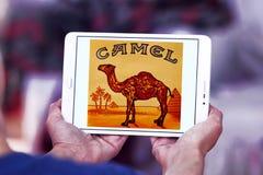 Camel cigarettes company logo Royalty Free Stock Image