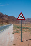 Camel Crossing Stock Photo