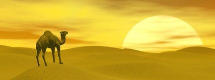 Camel in the desert - 3D render Royalty Free Stock Images