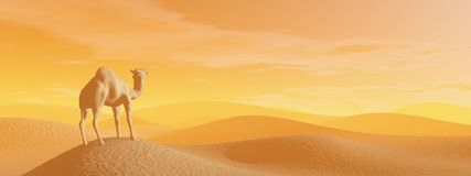 Camel in the desert - 3D render Stock Photography
