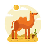 Camel in the Desert. Flat design vector geometric illustration of cute Bactrian or two-humped camel and stump with a branch in the hot Desert. Including sun royalty free illustration