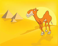 Camel in desert. Pyramids. Cartoon Stock Image
