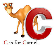 Camel domastic animal with alphabates Royalty Free Stock Photography