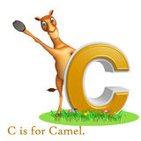 Camel domastic animal with alphabates Stock Photography