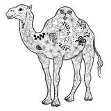 Camel  doodle Royalty Free Stock Image