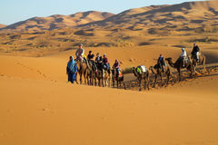Camel driver with camel caravan in desert stock photos
