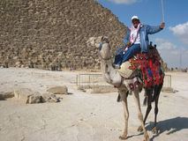 Camel driver at the piramids of Gizeh stock photo