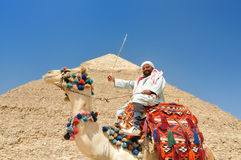 Camel driver and pyramid Royalty Free Stock Photos