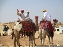 Camel drivers at Giza plateau Egypt Royalty Free Stock Image