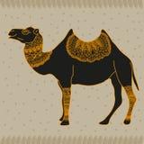 Camel Egypt. Vector graphic illustration design art Stock Image