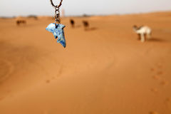 Camel and fish. Some camels in the desert of Morocco and marble fish Royalty Free Stock Photo
