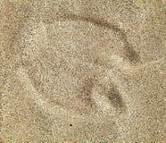 Camel foot prints in sand desert. Camel foot prints in sand on desert royalty free stock image