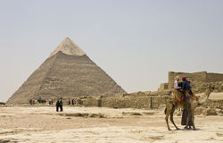 Camel in front of the Pyramid of Khafre Royalty Free Stock Photos