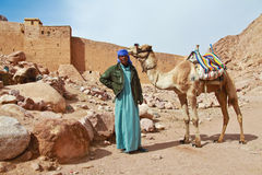 Camel guide Stock Image