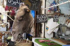 Camel head. Morocco Fes. Camel head in the market. Morocco Fes Africa Royalty Free Stock Image