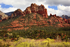 Camel Head Orange Red Rock Butte Sedona Arizona Stock Images