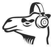 Camel with headphones Royalty Free Stock Photos