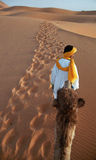 Camel highway. Camel driver and tourist guide walk to the top of dunes with tourist caravan. Merzouga, Marocco Royalty Free Stock Images