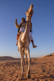 Camel and his cameleer. stock image