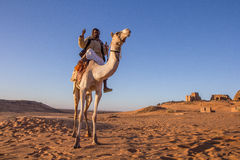 Camel and his cameleer. royalty free stock photo