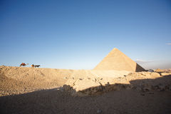 A camel and a horse approaching a pyramid Royalty Free Stock Image