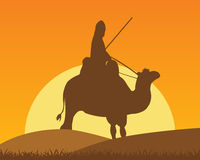 Camel with horseman Stock Photos