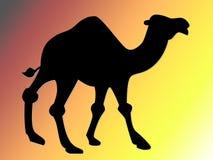 Camel illustration. Black camel illustration on gradient background royalty free illustration