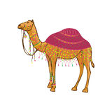 Camel India traditional decoration fair desert. Camel with traditional decoration isolated on white background. Camel fair vector illustration