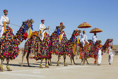Camel and indian men wearing traditional Rajasthani dress participate in Mr. Desert contest as part of Desert Festival in Jaisalme. JAISALMER, INDIA - FEBRUARY stock photo