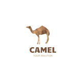 Camel logo. Company travel electronics vector illustration