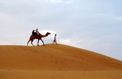 Camel with a man walking on the sand in the desert Royalty Free Stock Photography